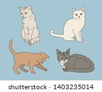 Cute Cats Of Various Colors....