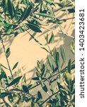 mediterranean nature  botanical ...   Shutterstock . vector #1403423681