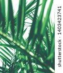 botanical backdrop  exotic...   Shutterstock . vector #1403423741