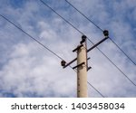 Electric Concrete Pole With...
