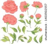set of flower elements peony...   Shutterstock .eps vector #1403502557