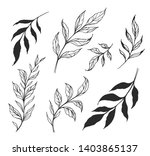 set of branches with leaves.... | Shutterstock .eps vector #1403865137