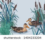 wild ducks in the thickets of... | Shutterstock .eps vector #1404233204