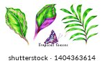 tropical palm leaves  jungle... | Shutterstock . vector #1404363614