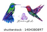 hummingbirds composition.... | Shutterstock . vector #1404380897