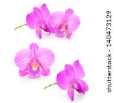 Collection Violet Orchid...