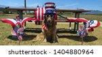Yankee Doodle Dandy Patriotic...