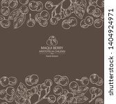 background with maqui berry ...   Shutterstock .eps vector #1404924971
