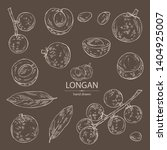 collection of longan  fruit and ... | Shutterstock .eps vector #1404925007