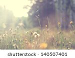 Stock photo plants dandelions 140507401
