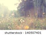 plants dandelions | Shutterstock . vector #140507401