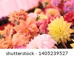 beautiful colorful flowers... | Shutterstock . vector #1405239527