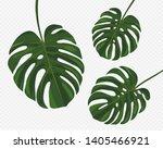tropical monstera leaves... | Shutterstock .eps vector #1405466921