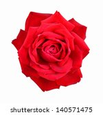 rose it is isolated on a white... | Shutterstock . vector #140571475