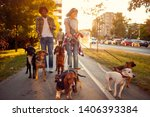 Stock photo group of dogs in the park walking with happy girl and man 1406393384
