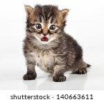 beautiful cute 20 days old... | Shutterstock . vector #140663611