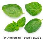 fresh basil isolated on white...   Shutterstock . vector #1406716391