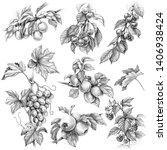 hand drawn branches of fruit... | Shutterstock . vector #1406938424