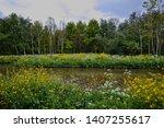 Canal In Dutch Landscape ...