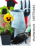 Beautiful garden flowers, tools and old watering can. - stock photo