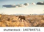closeup of african elephant on...   Shutterstock . vector #1407845711