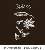 hand drawn sketch spices set....   Shutterstock .eps vector #1407930971