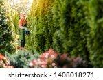 Men Trimming Wall of Garden Thujas Hedge Using Gasoline Trimmer. Caucasian Gardener in His 30s.  - stock photo