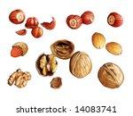 assorted nuts  walnuts  almonds ... | Shutterstock . vector #14083741