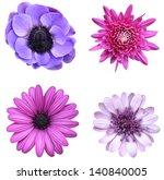 Violet Collage Flovers