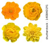 Stock photo yellow collage flowers 140840191