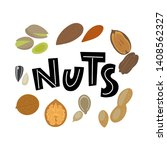 nuts and seeds. almond  walnut  ... | Shutterstock .eps vector #1408562327