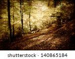 A Mystical Landscape In A...