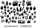 Collection Of Vector Outlines...