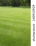Green  Striped Lawn In The Park