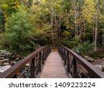 Footbridge Over Chittenango...