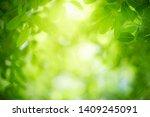closeup nature view of green... | Shutterstock . vector #1409245091