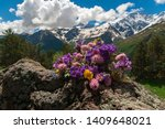 bright colored field bouquet... | Shutterstock . vector #1409648021