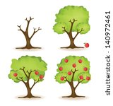 Apple Tree Vector Illustration