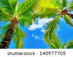 Palm Trees On Blue Sky And...