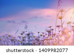 summer floral nature background ... | Shutterstock . vector #1409982077