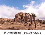 joshua tree nayional park... | Shutterstock . vector #1410572231