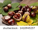 Chestnut Fruits In Shell And...