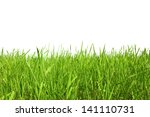 grass in field isolated on... | Shutterstock . vector #141110731