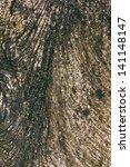 abstract background tree bark... | Shutterstock . vector #141148147