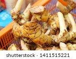 fresh galangal in the market   Shutterstock . vector #1411515221