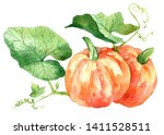 watercolor pumpkin with leaves. ... | Shutterstock . vector #1411528511