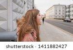 heerful  playful  playful and... | Shutterstock . vector #1411882427