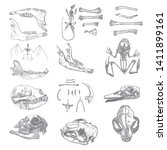 magic animal bones design... | Shutterstock .eps vector #1411899161