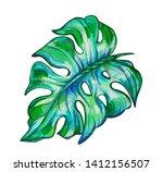 drawn manstera sheet on an... | Shutterstock . vector #1412156507