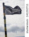 black shark warning flag... | Shutterstock . vector #141232711